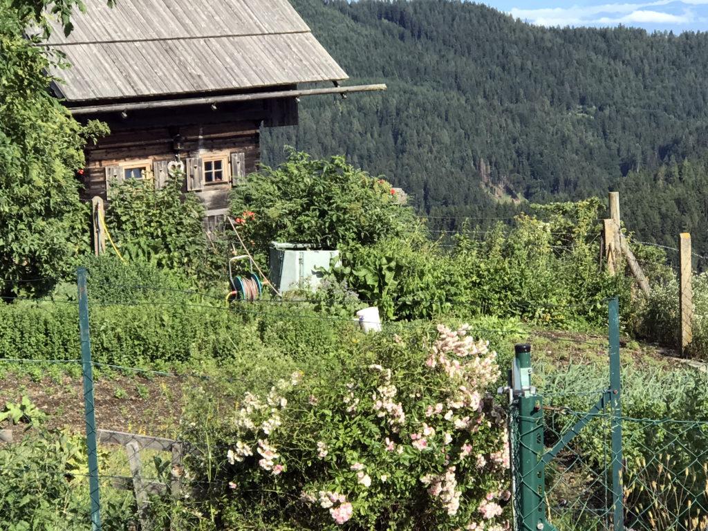 Der Troadkasten am Magdalensberg inklusive Hausgarten